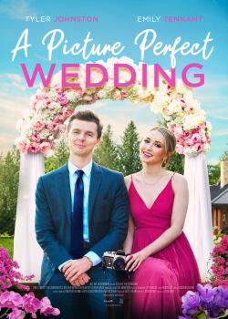Картина идеальной свадьбы